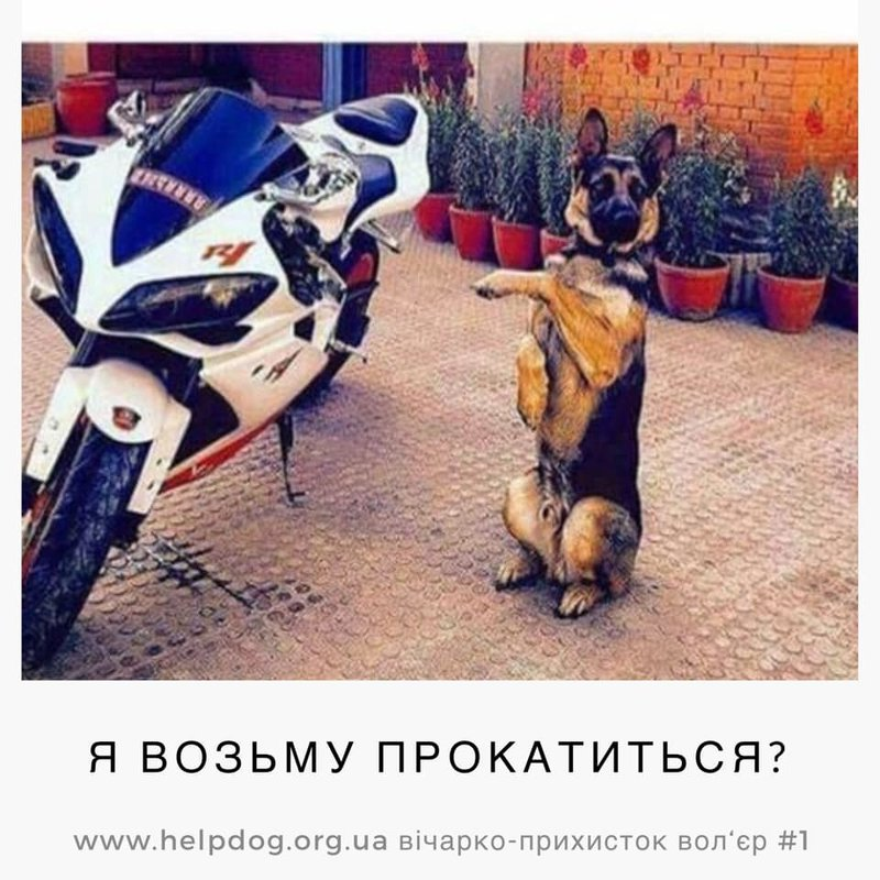 http://forumimage.ru/uploads/20190926/156950893719123337.jpg