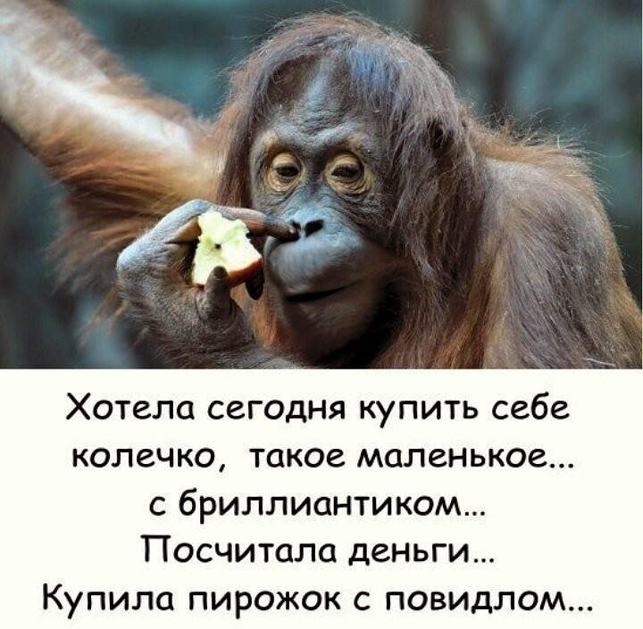 http://forumimage.ru/uploads/20191008/15705652158301273.jpg