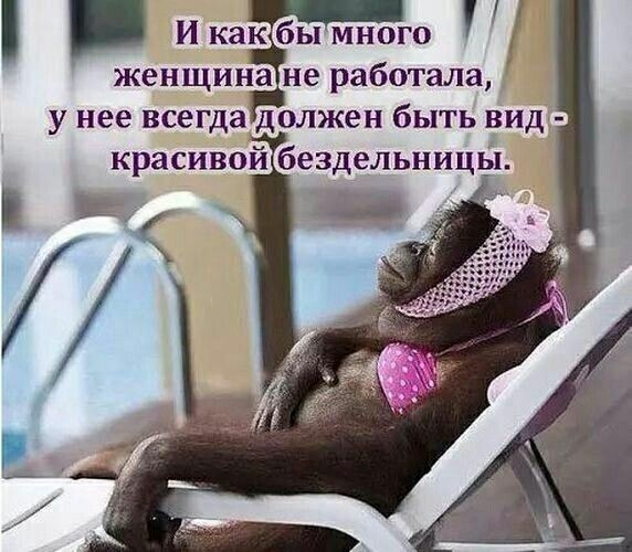 http://forumimage.ru/uploads/20191010/157072943664283864.jpg