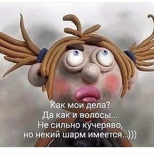 http://forumimage.ru/uploads/20191010/15707295020430194.jpg