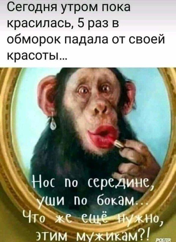 http://forumimage.ru/uploads/20191010/157073216739666621.jpg
