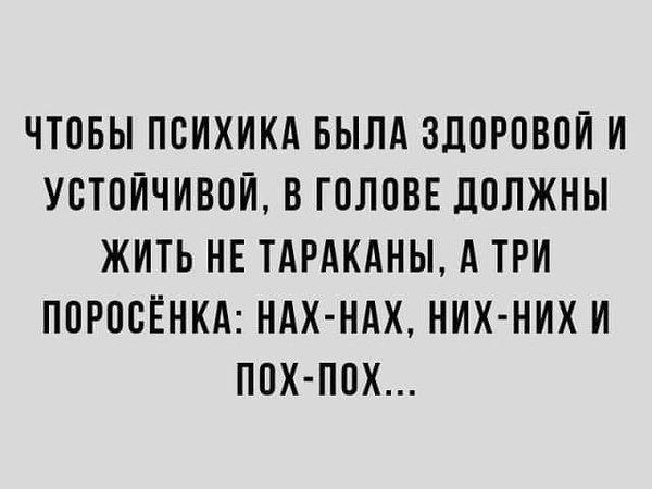 http://forumimage.ru/uploads/20191011/157078521562584531.jpg