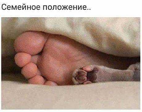 http://forumimage.ru/uploads/20191015/157115717250427191.jpg