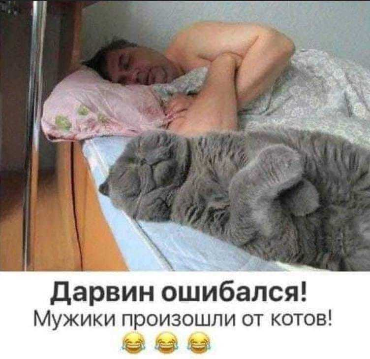 http://forumimage.ru/uploads/20191025/157202315374871972.jpg