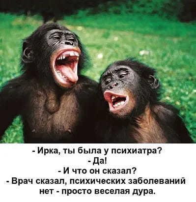 http://forumimage.ru/uploads/20191025/15720231594620249.jpg