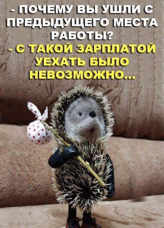 http://forumimage.ru/uploads/20191028/157226009979885868.jpg