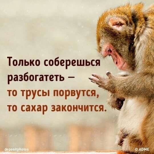 http://forumimage.ru/uploads/20191028/157229980291837440.jpg