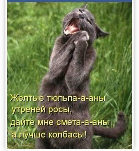 http://forumimage.ru/uploads/20191028/157229980855564868.jpg
