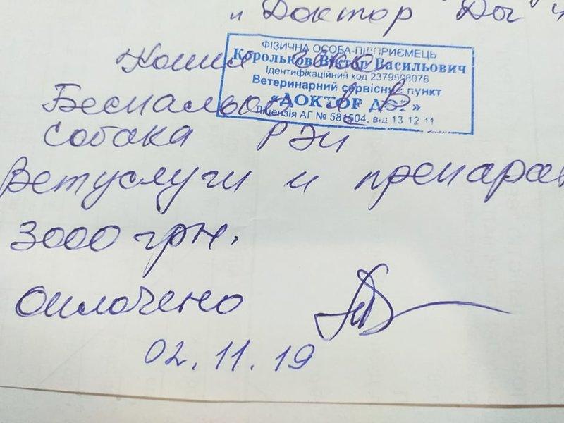 Общий финансовый отчет счетов Матвеевой