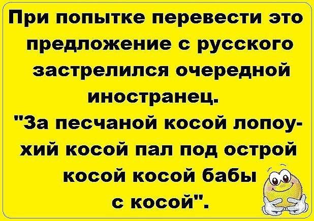 http://forumimage.ru/uploads/20191111/157350112430592583.jpg