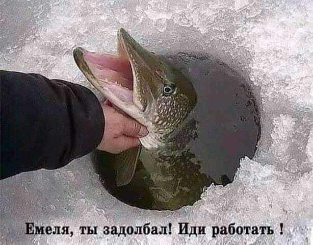 http://forumimage.ru/uploads/20191118/157409651353442356.jpg