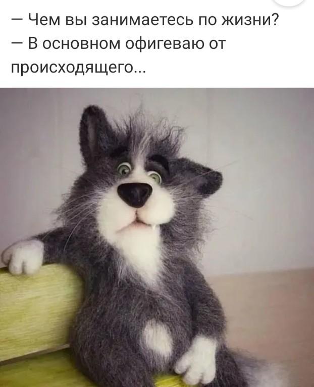 http://forumimage.ru/uploads/20191213/1576201478083231.jpg