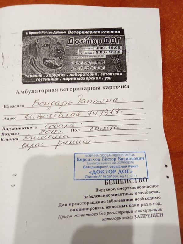Фин.отчет Джессика Т.Бондарь