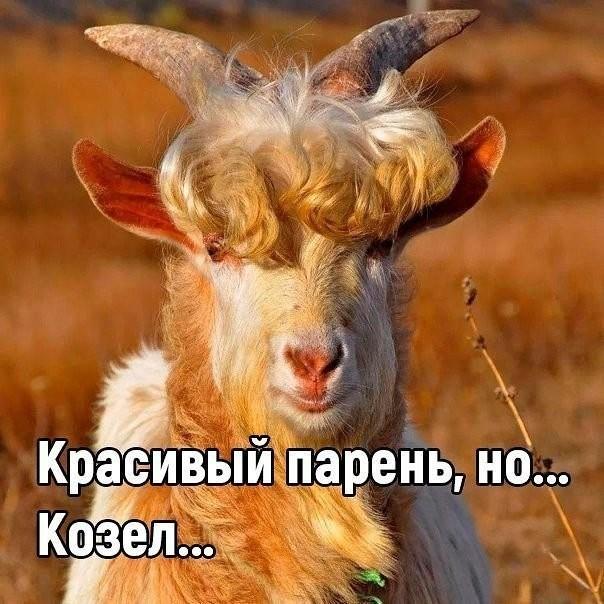 http://forumimage.ru/uploads/20191218/15766604766632576.jpg