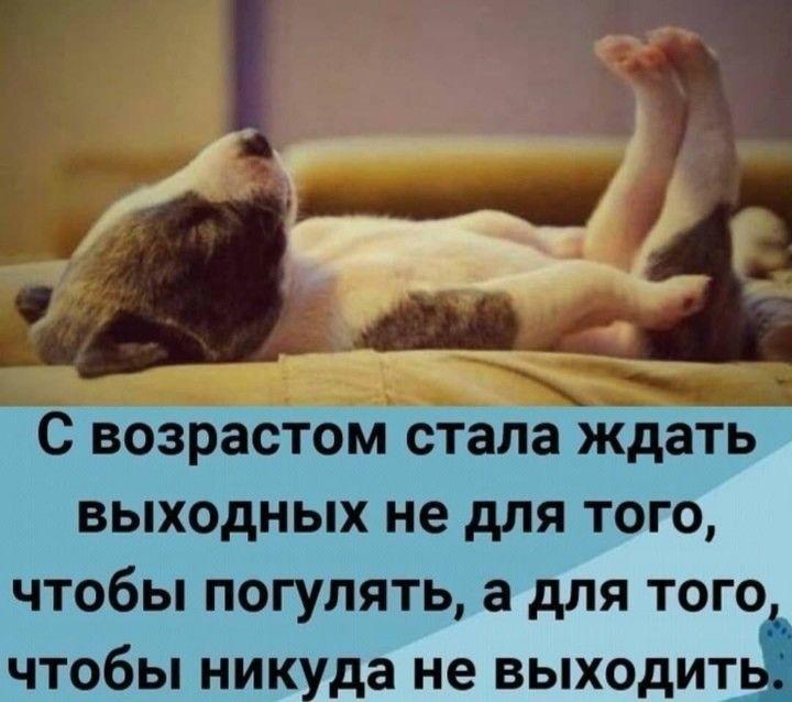 http://forumimage.ru/uploads/20200111/15787458351594381.jpg
