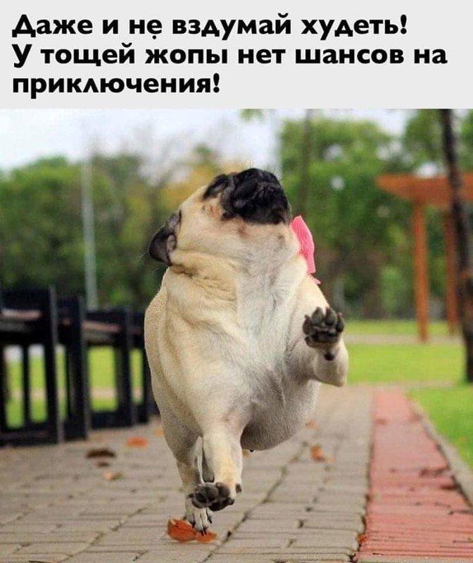 http://forumimage.ru/uploads/20200111/1578745916188710076.jpg