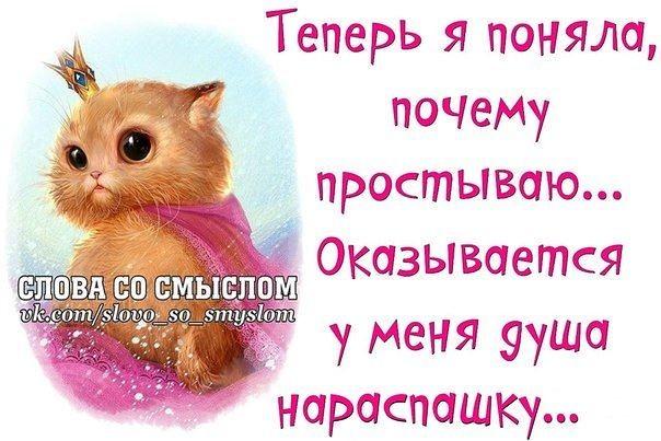 http://forumimage.ru/uploads/20200204/158080461078002767.jpg