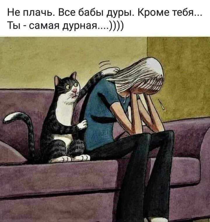 http://forumimage.ru/uploads/20200204/158080462904225811.jpg