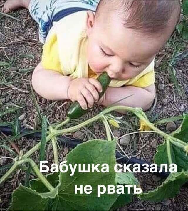 http://forumimage.ru/uploads/20200209/15812612134872273.jpg