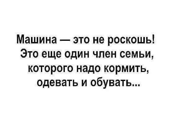 http://forumimage.ru/uploads/20200218/158203255741567256.jpg