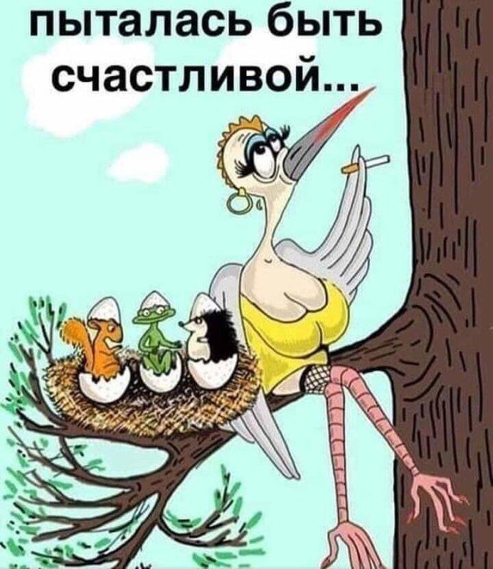 http://forumimage.ru/uploads/20200227/158281308832388679.jpg
