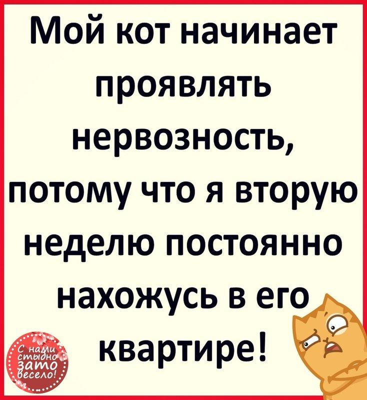 http://forumimage.ru/uploads/20200402/15858704801410216.jpg
