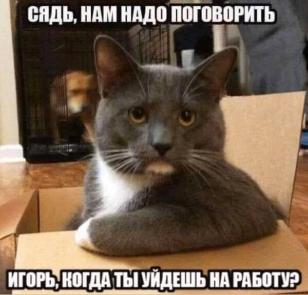 http://forumimage.ru/uploads/20200403/158590621895158895.jpg