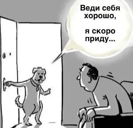 http://forumimage.ru/uploads/20200407/158624835900417835.jpg