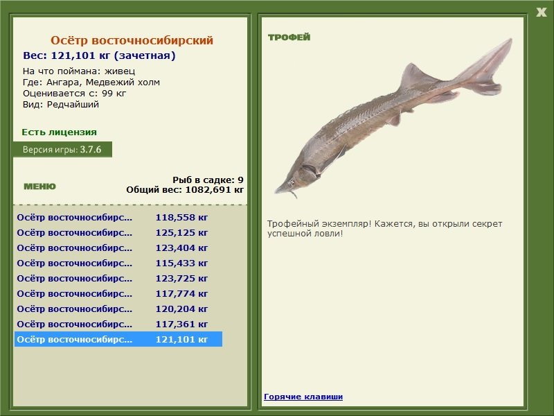 Крокодилья река