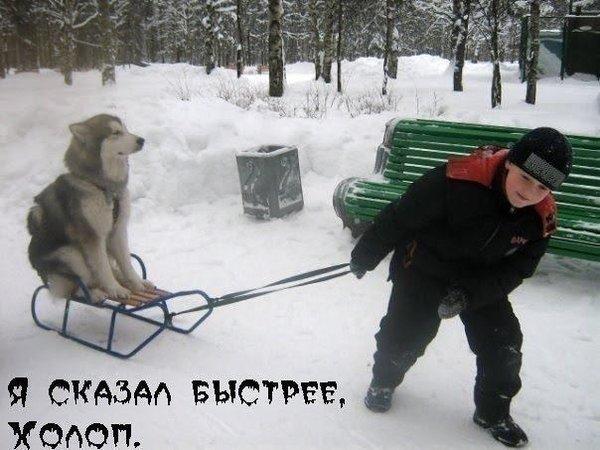 http://forumimage.ru/uploads/20201128/160659154653082464.jpg