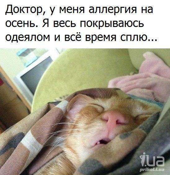 http://forumimage.ru/uploads/20211018/163454778899662531.jpg