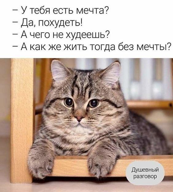 http://forumimage.ru/uploads/20211020/163476411926811593.jpg