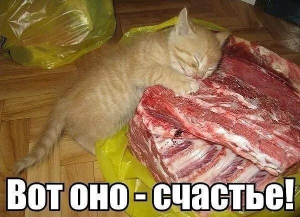 http://forumimage.ru/uploads/20211020/163476412003543419.jpg