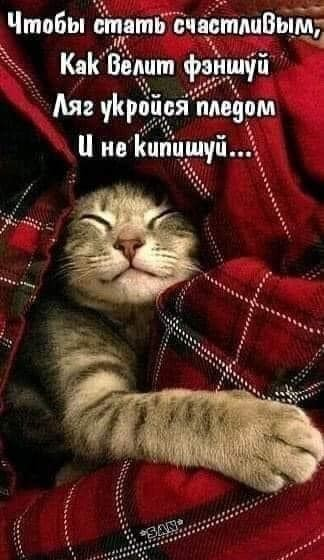 http://forumimage.ru/uploads/20211020/163476412037833994.jpg
