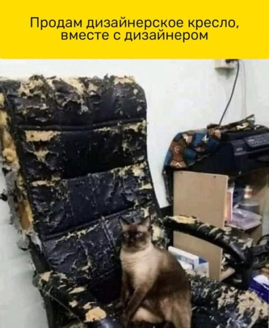 http://forumimage.ru/uploads/20211020/163476412082826125.png
