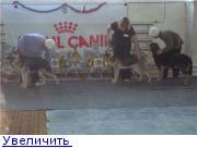 http://forumimage.ru/thumbs/20110125/129599056052001657.jpg