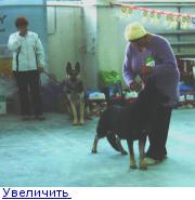http://forumimage.ru/thumbs/20110125/129599056939003459.jpg