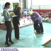 http://forumimage.ru/thumbs/20110125/129599121468008335.jpg