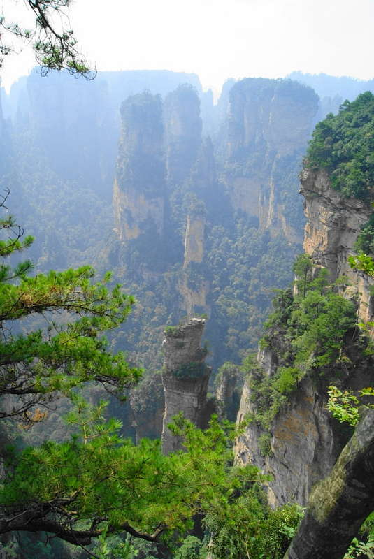 http://forumimage.ru/uploads/20111004/131769886785001031.jpg