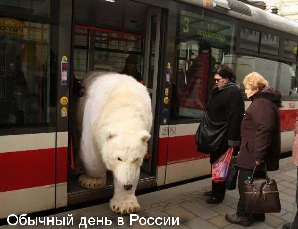 http://forumimage.ru/uploads/20150331/142782033721764390.jpg