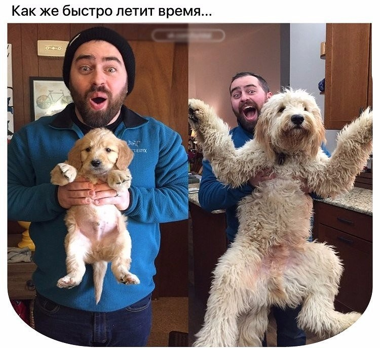 http://forumimage.ru/uploads/20170604/149659360068193741.jpg