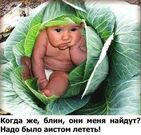 http://forumimage.ru/uploads/20190926/156949166379511532.jpg