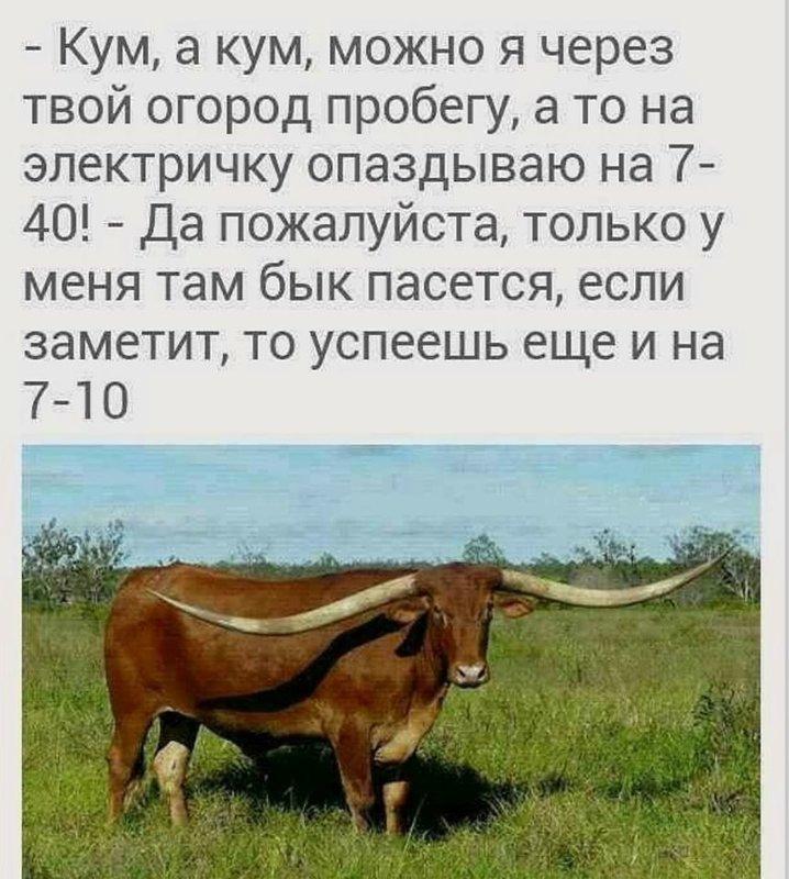 http://forumimage.ru/uploads/20191028/15722997916037893.jpg
