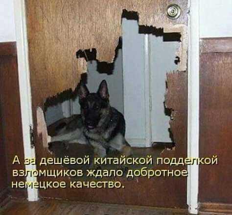 http://forumimage.ru/uploads/20191028/15722997973168735.jpg