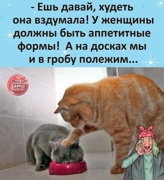 http://forumimage.ru/uploads/20210501/161990030560702116.jpg