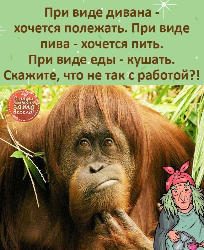 http://forumimage.ru/uploads/20210727/162740203444619813.jpg
