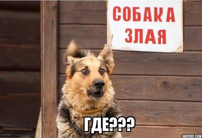http://forumimage.ru/uploads/20210823/162976136422732733.jpg