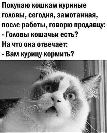 http://forumimage.ru/uploads/20210823/16297613645515990.jpg