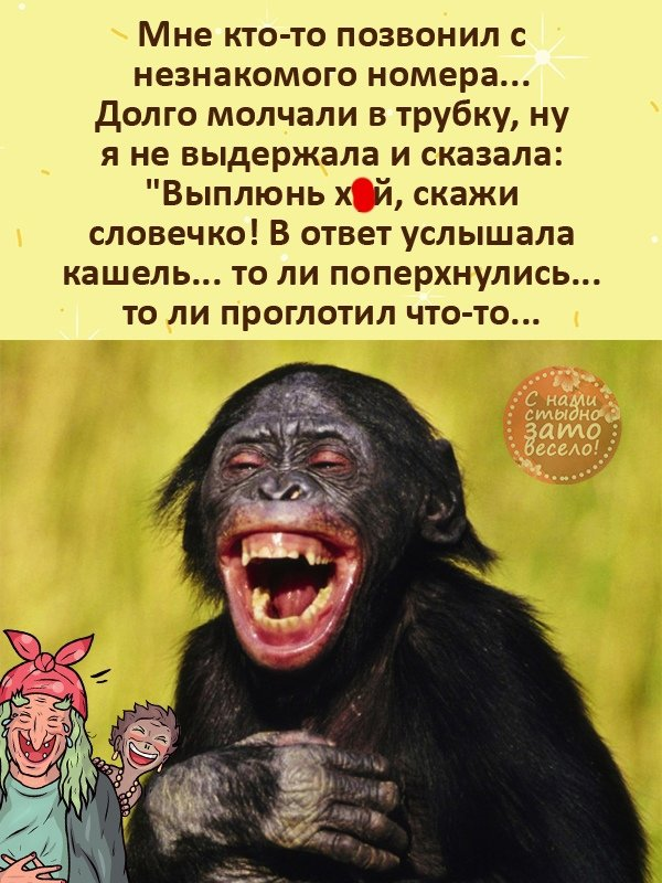 http://forumimage.ru/uploads/20210823/162976136496945994.jpg