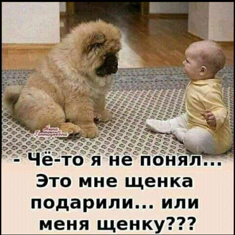 http://forumimage.ru/uploads/20210827/163008357289872539.jpg